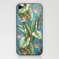 Tropical garden iPhone & iPod Skin