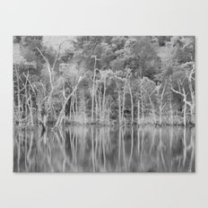 lonely shore II Canvas Print