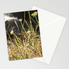 Release of a Young Skunk Stationery Cards