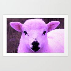 Animals Of The Rainbow Lamb Art Print