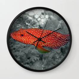 Red Coral Cod Wall Clock