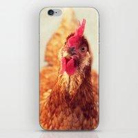 chicken iPhone & iPod Skins featuring chicken by Beverly LeFevre