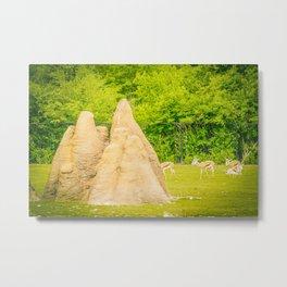 termite hills Metal Print