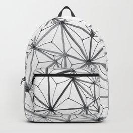 Organic Web Four Backpack