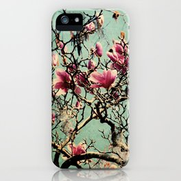 Pink Japanese Magnolia Tree in Flower iPhone Case