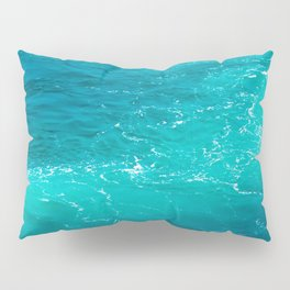 H2Oh, that's cold! Pillow Sham