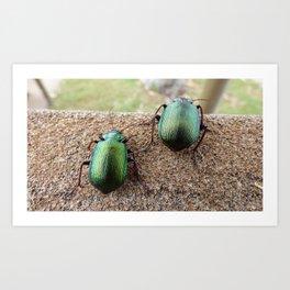 Iridescent  Green Beetles Art Print