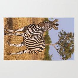 Zebra in Africa, wildlife Rug