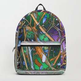 The Twiggs Theory of the Universe Backpack