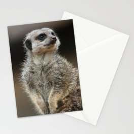 Meerkat Pose Stationery Cards