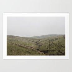Pastures of CA Art Print