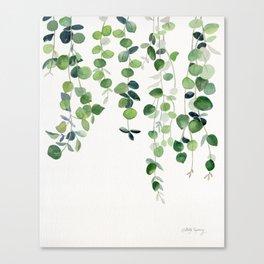 Eucalyptus Watercolor 2  Canvas Print