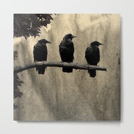 Three Like Minded Crows Metal Print
