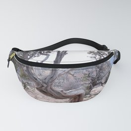 Old Man Tree Fanny Pack