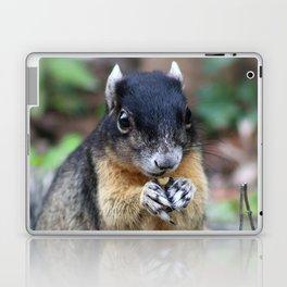 Black Squirrel Laptop & iPad Skin