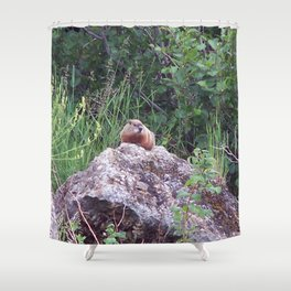 Groundhog on a Rock Shower Curtain