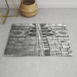 Leon Cathedral Reflection Rug
