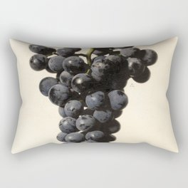 Vintage Concord Grapes Illustration Rectangular Pillow