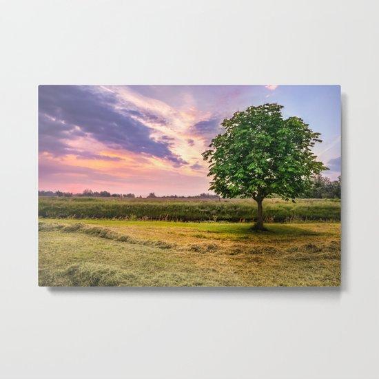 Green Tree and Sunset Sky Metal Print
