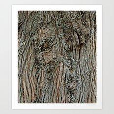 Armidale4142 Art Print