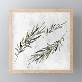 Eucalyptus Leaves White Framed Mini Art Print