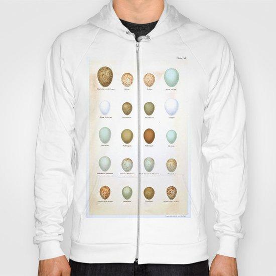 Vintage Bird Eggs  Hoody