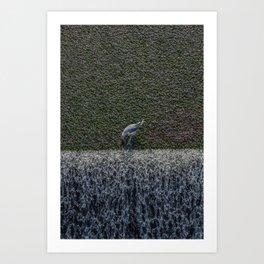 Gull vavelia Art Print