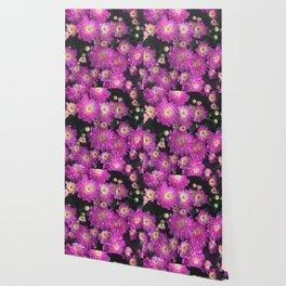 Pink Mums Garden Wallpaper