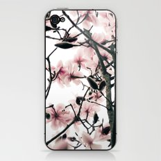 Magnolia Canopy iPhone & iPod Skin