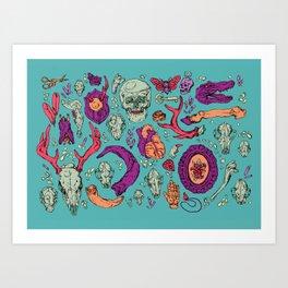 A Curious Collection Art Print