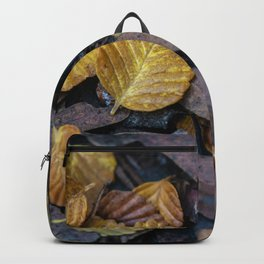 Forest Floor Fagus Backpack