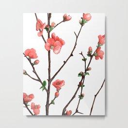 Flowering Quince Painting Metal Print