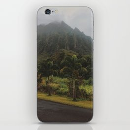 Rustic Mountains iPhone Skin