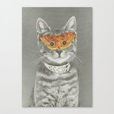 The cat's eyes have it Canvas Print