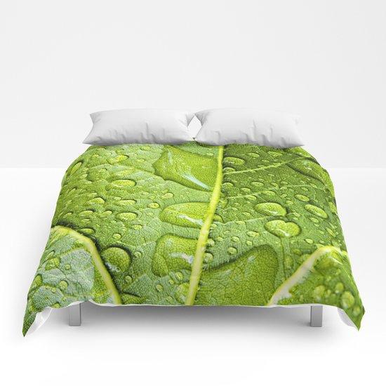 refresh Comforters