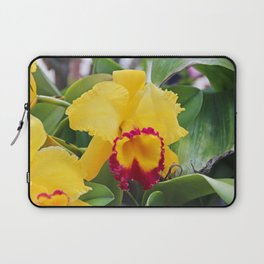 Sultry Songstress Laptop Sleeve