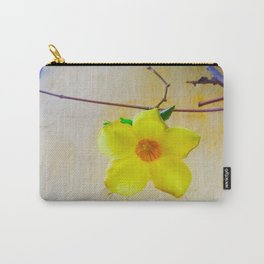 What I Found in Cartegena & Bogota Colombia is Precious Carry-All Pouch