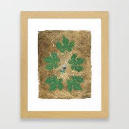A Shiraz In My Garden Framed Art Print