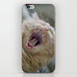 Ginger Cat With Long Whiskers Yawning iPhone Skin