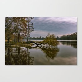 Narcissus (The Kiss) Canvas Print