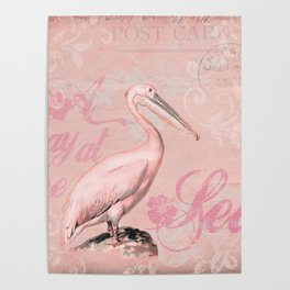 Retro Pelican Vintage Style Illustration Poster