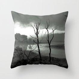 Quabaug River North Brookfield, MA Throw Pillow