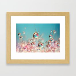 Cactus Candy Framed Art Print