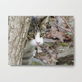 My Hunting Cat Metal Print