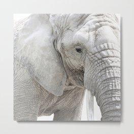 Elephant Photography | Minimalism | Animal | African Wildlife Metal Print