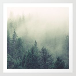 My Peacful Misty Forest Art Print
