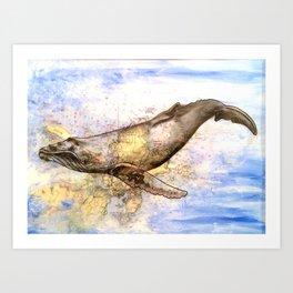Gloucester Humpback Whale Art Print