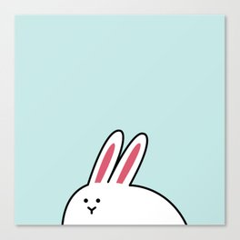 A-Shi Rabbit Canvas Print