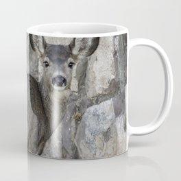 Young Mule Deer Coffee Mug