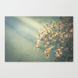 In the morning, I'll call you Canvas Print